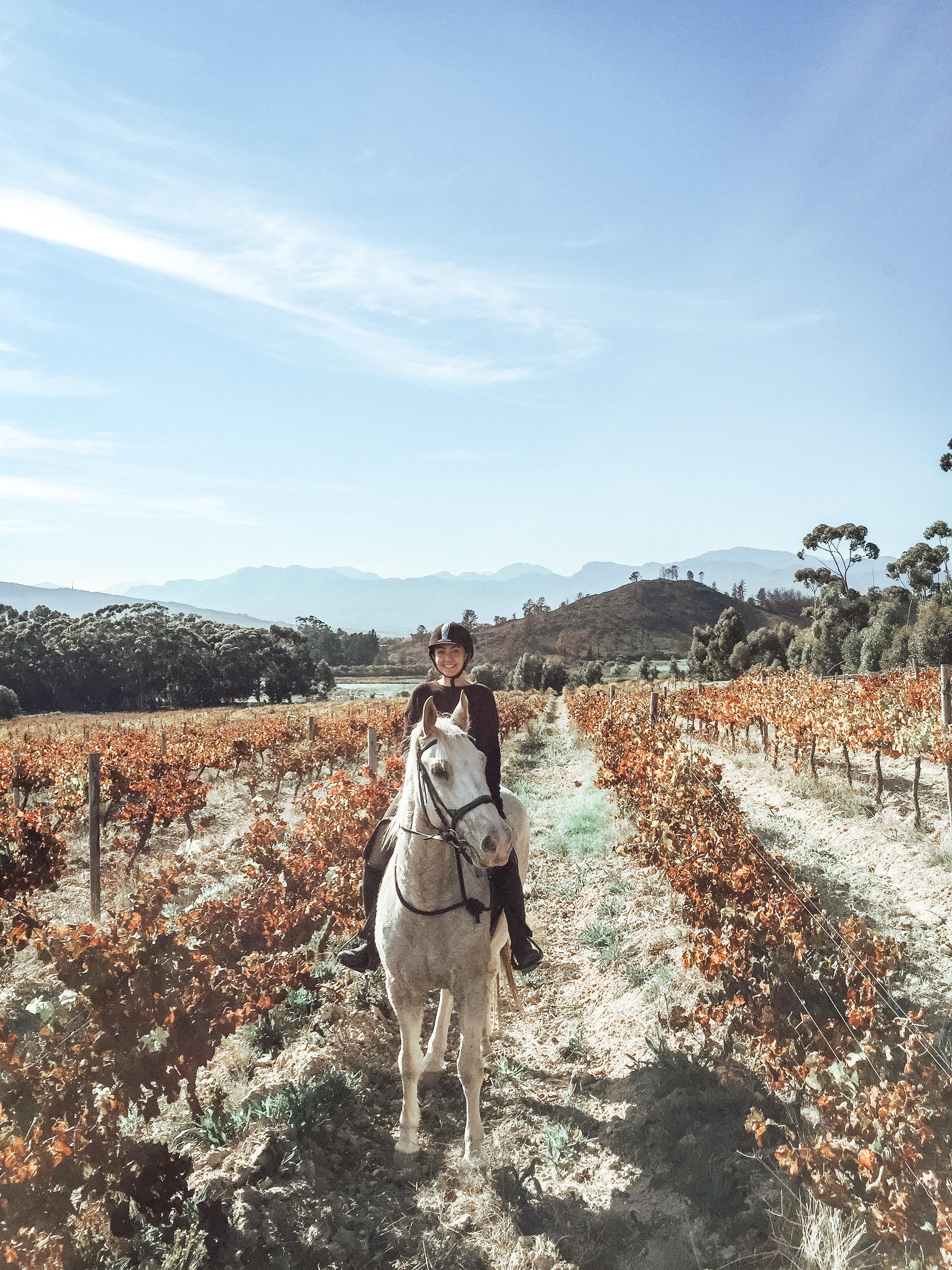 cape-town-horse-riding.jpg