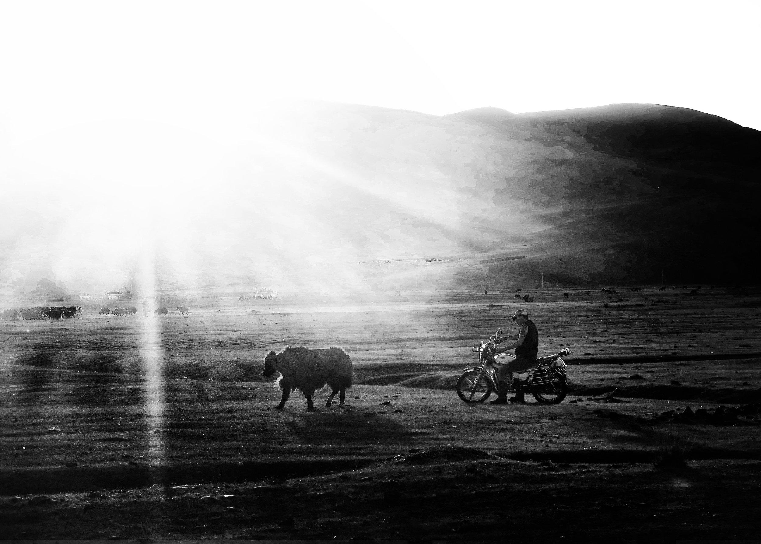 Copy of Mongolia 2017 by Janie Shih