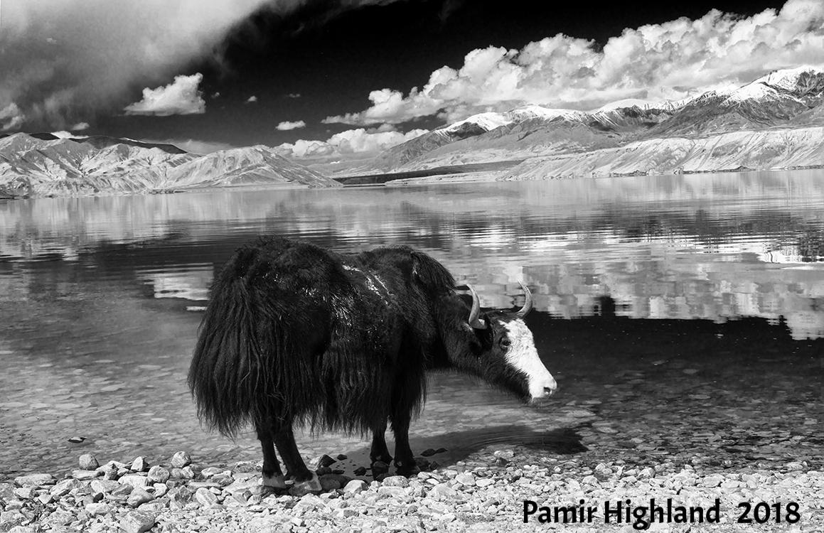 Copy of Pamir Highland, 2018