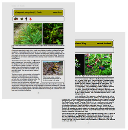 Example pages showing layout and images.