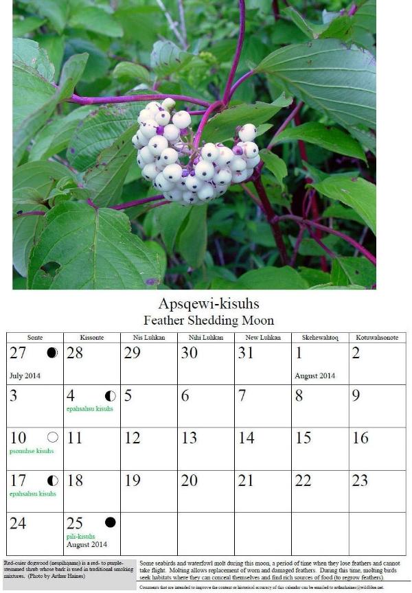 moon-calendar-example copy.jpg