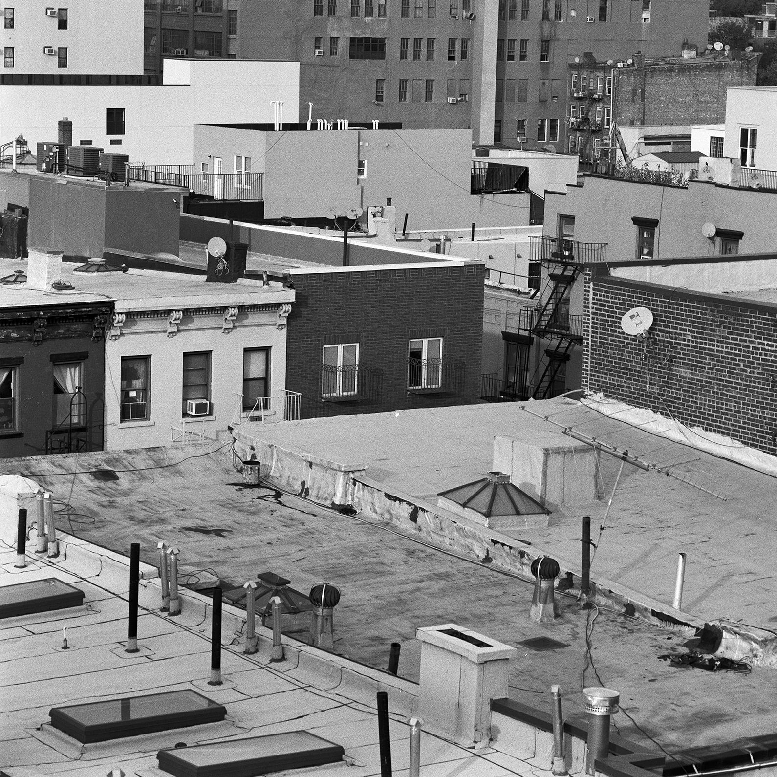Views of Brooklyn , 2015