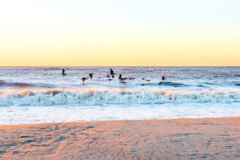wild-dunes-resort-sunset.jpg