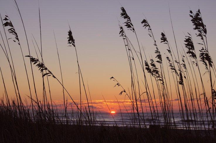 Wild Dunes_Pool_Boardwalk Inn.jpg