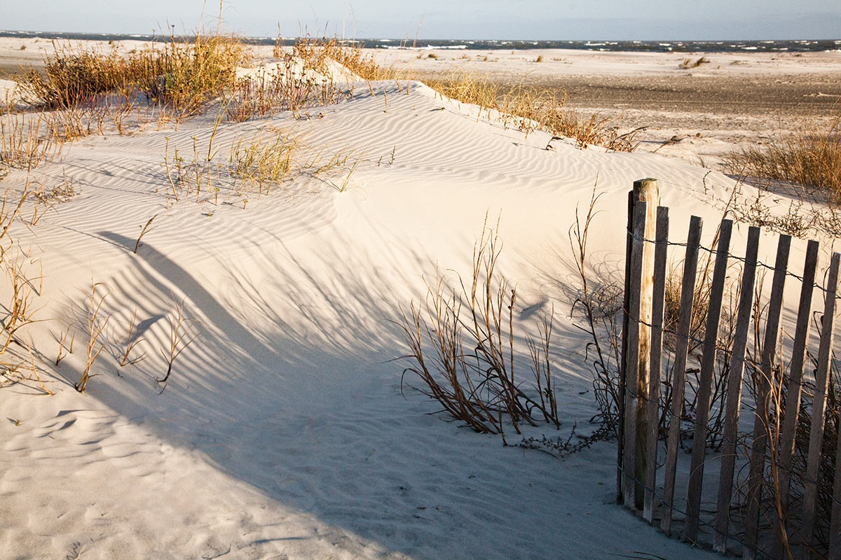 Wild Dunes_Nature_SandDunes.jpg