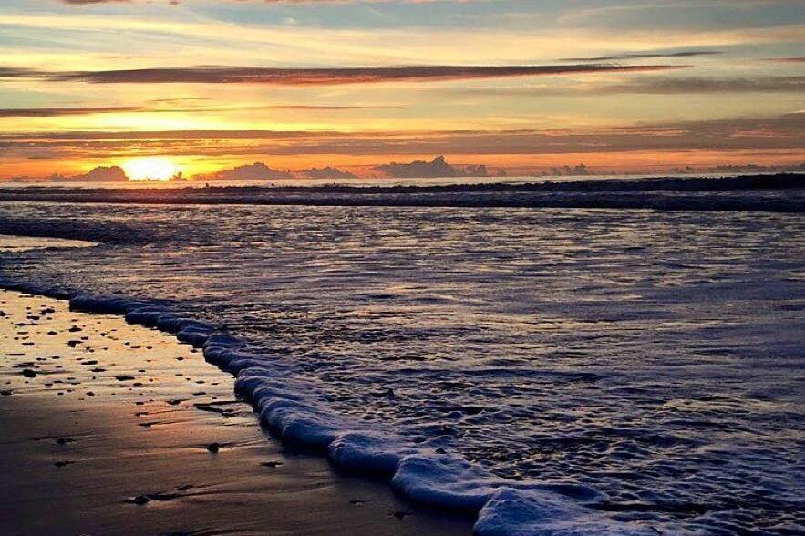 wild-dunes-ocean.jpg