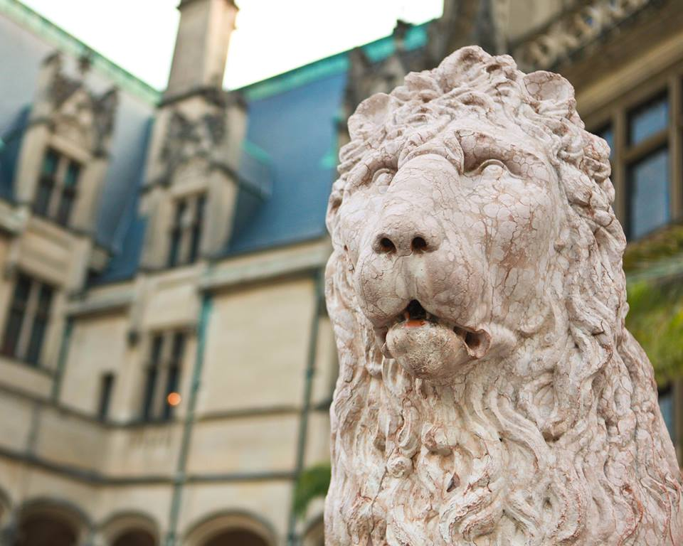 biltmore-lion.jpg