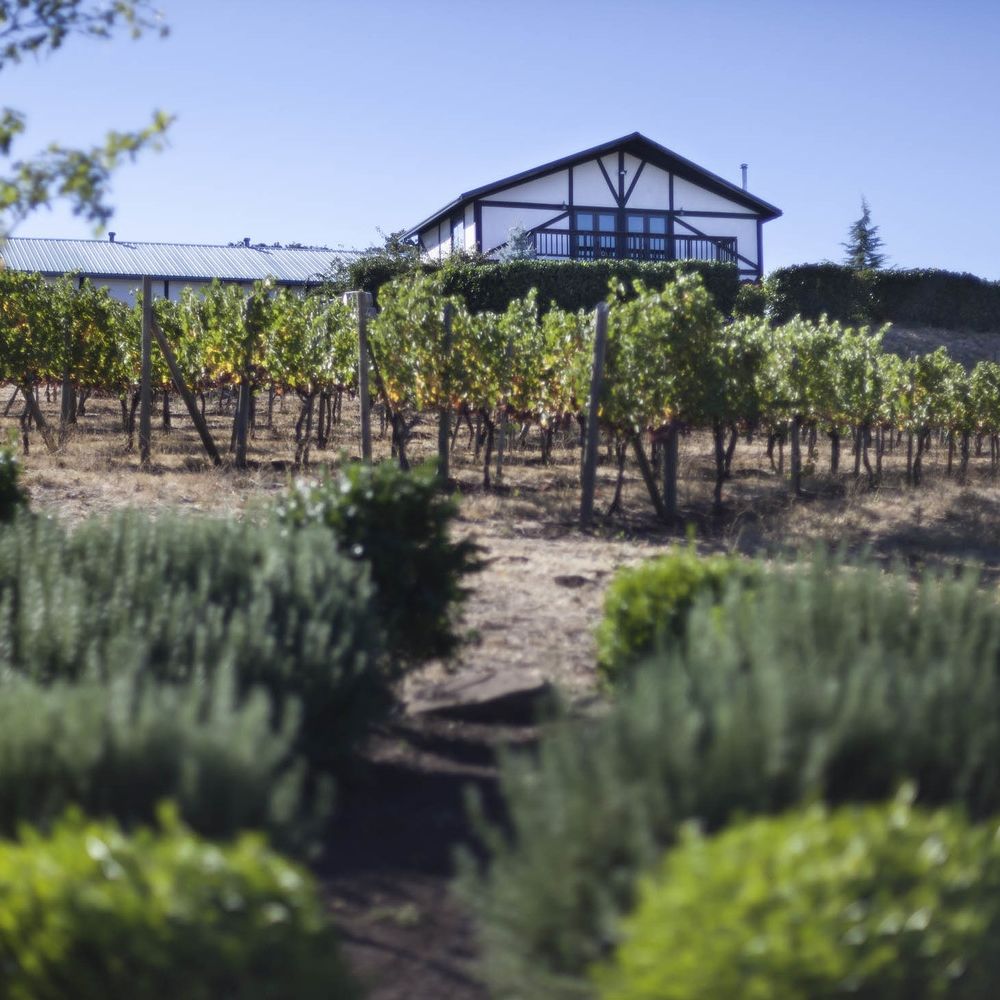 Weisinger Family Winery_0514_web.jpg