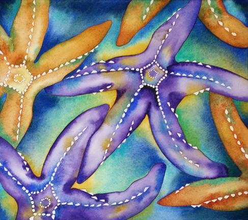 Ochre Sea Stars I