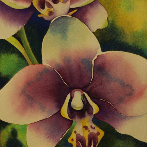 Kauai Orchid