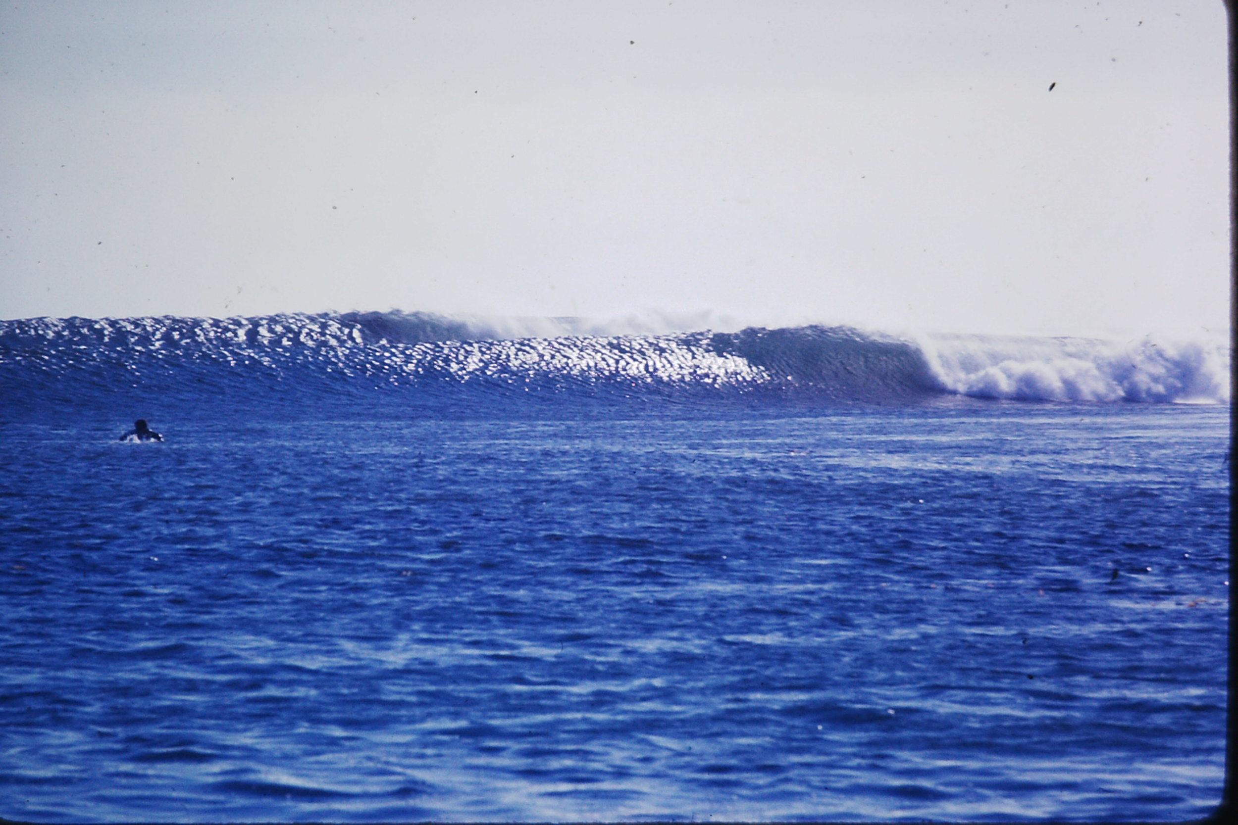 bruce_jones_surfboards_3.JPG