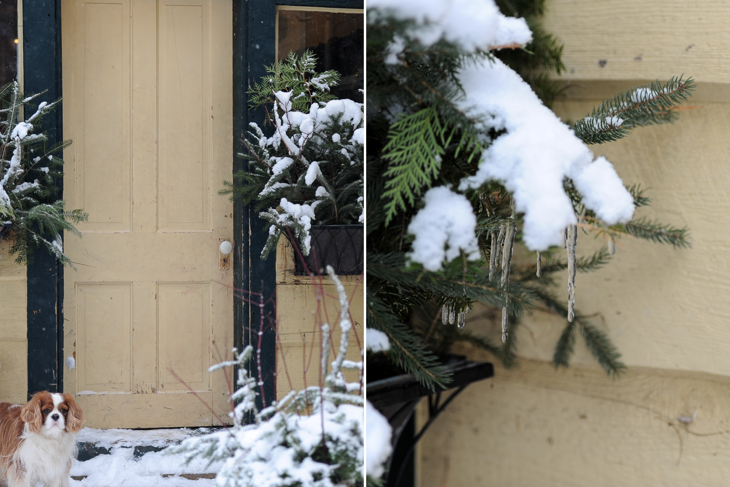 Snow-Day-11.jpg