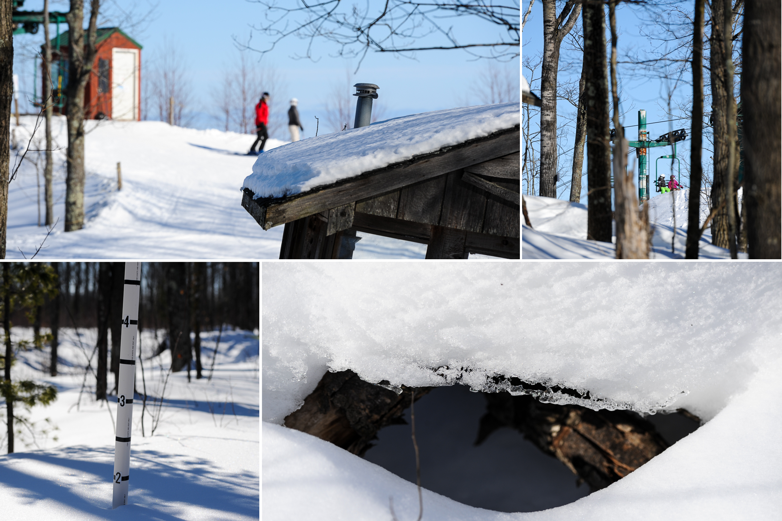 Winter-Fest-3.jpg