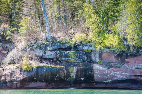Eagles on Hermit Island