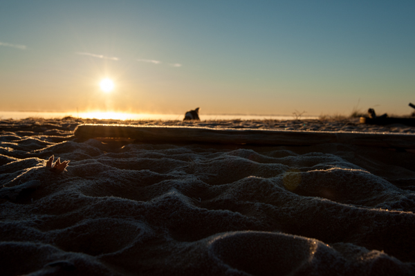 frosty morning on beach