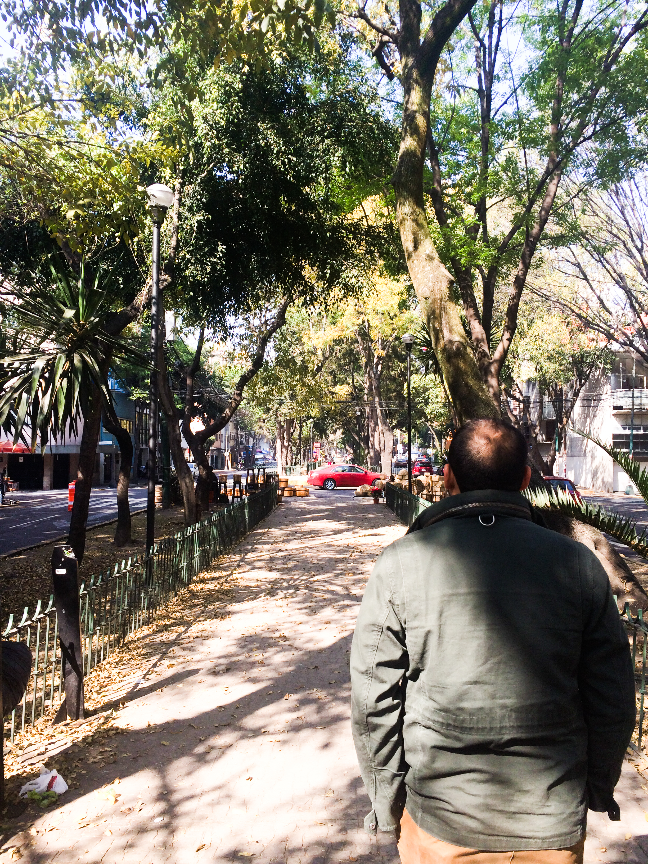 Strolling down a tree lined thoroughfare in the middle of street. This is the definition of pedestrian friendly. We spent a lot of time just people watching and walking.