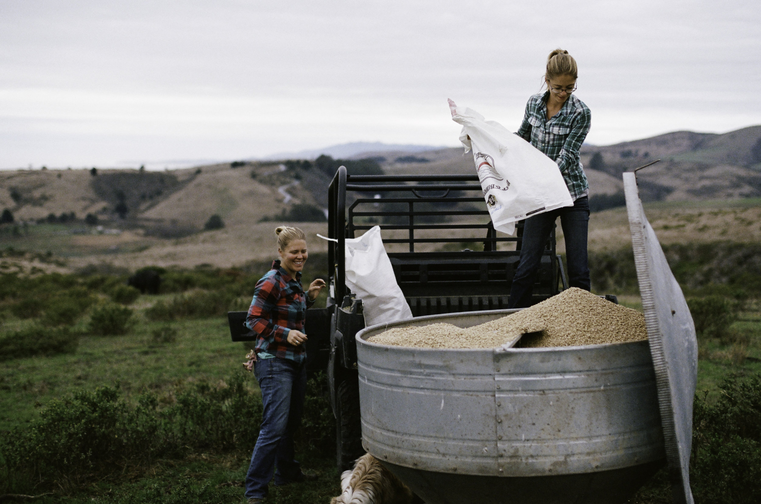 Family friends Ruth Saunders (L) AND Johanna Long (R) fill up the pig feeder. They are fed a varied diet of grass, grains, vegetables and more. - Half Moon Bay, CA