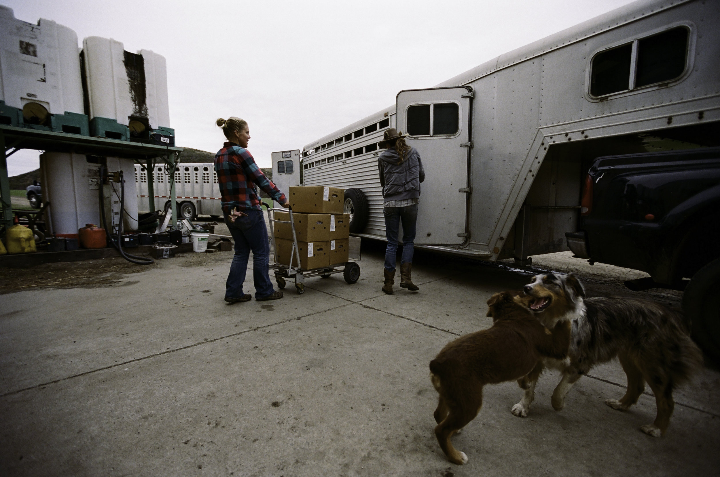 Ruth and Suey unload freshly processed meat. - Half Moon Bay, CA
