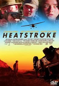 Heat Stroke   Video Assist