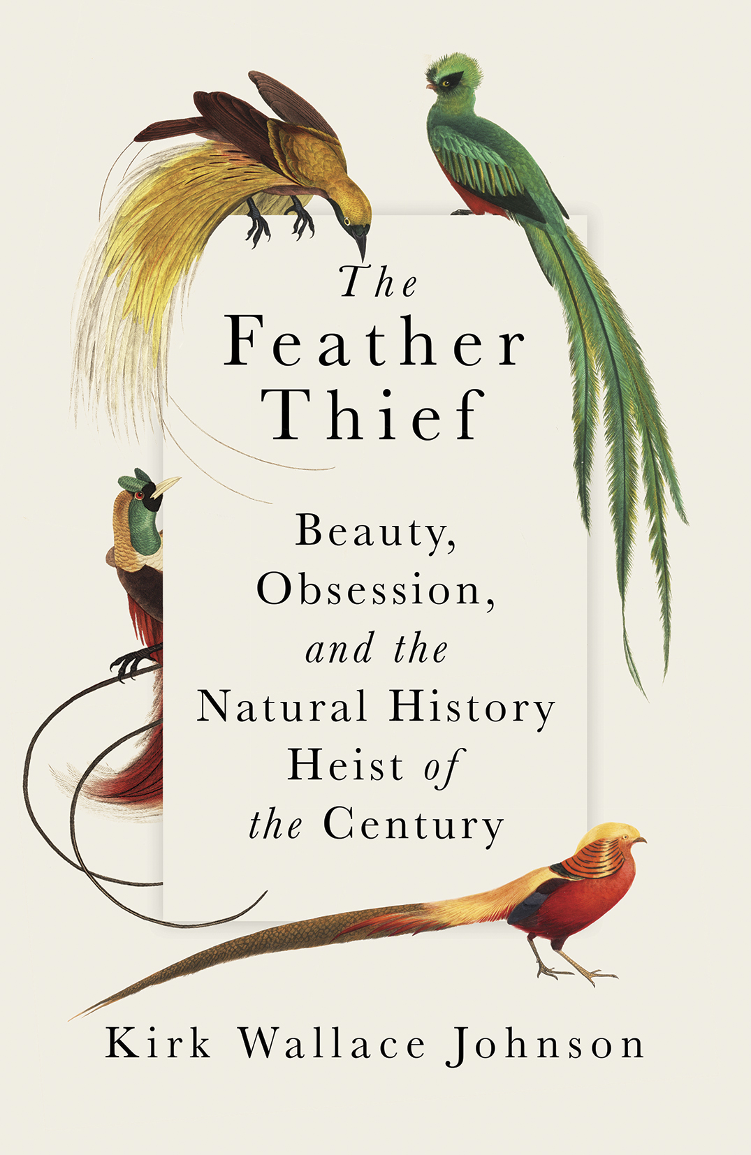 The Feather Thief 4.jpg