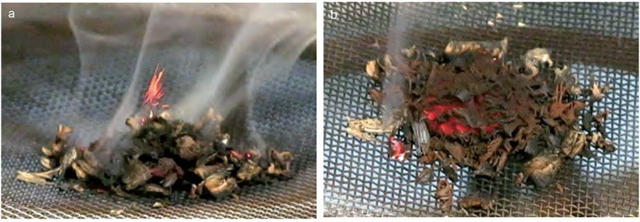 Experimentos de combustión con dióxido de manganeso y mezclas de madera que muestran: (a) pequeñas llamas rojas y emisión volátil; (b) la fase de combustión de fuego incandescente.