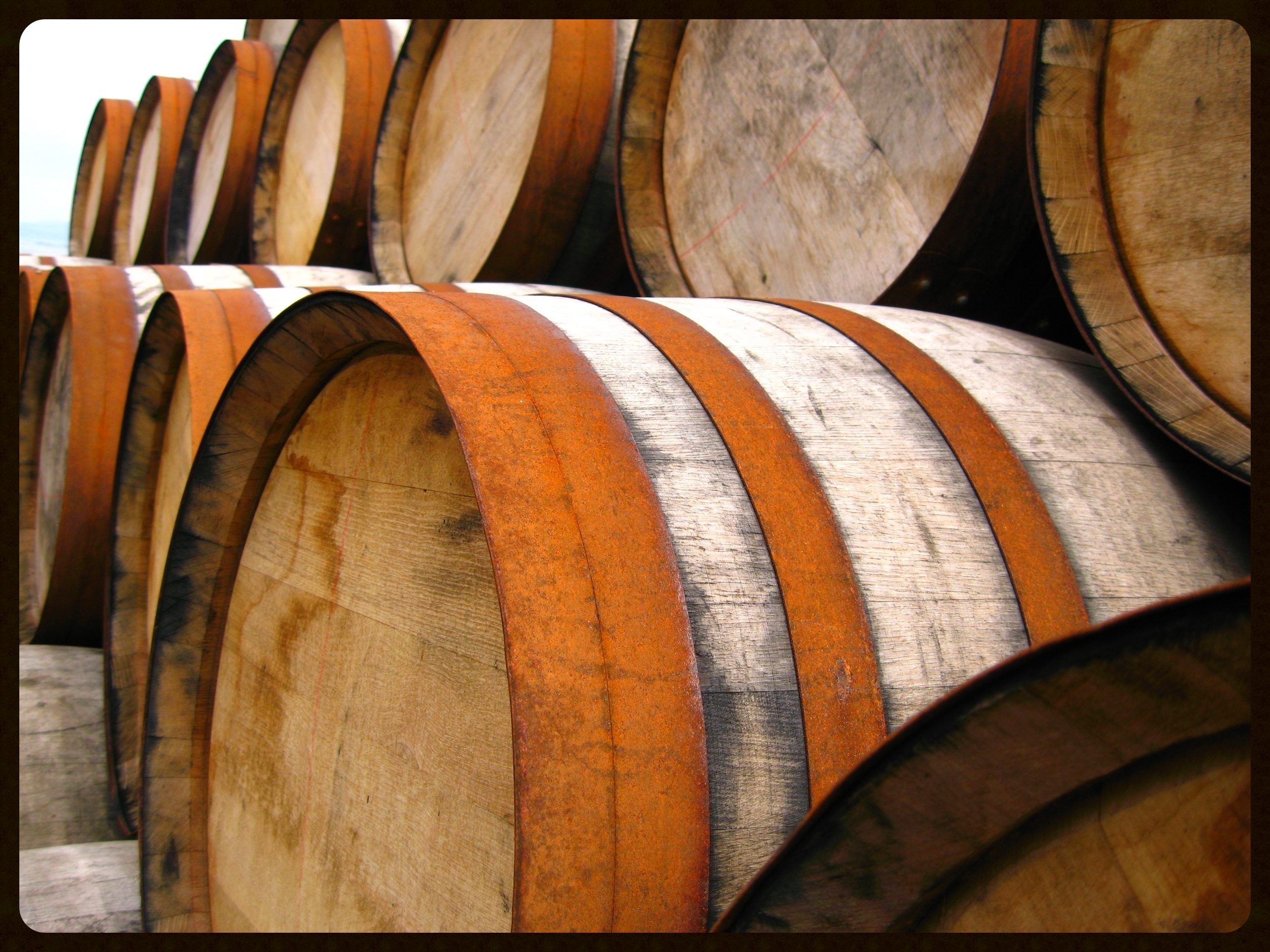 Casks waiting to be filled with new make spirit.