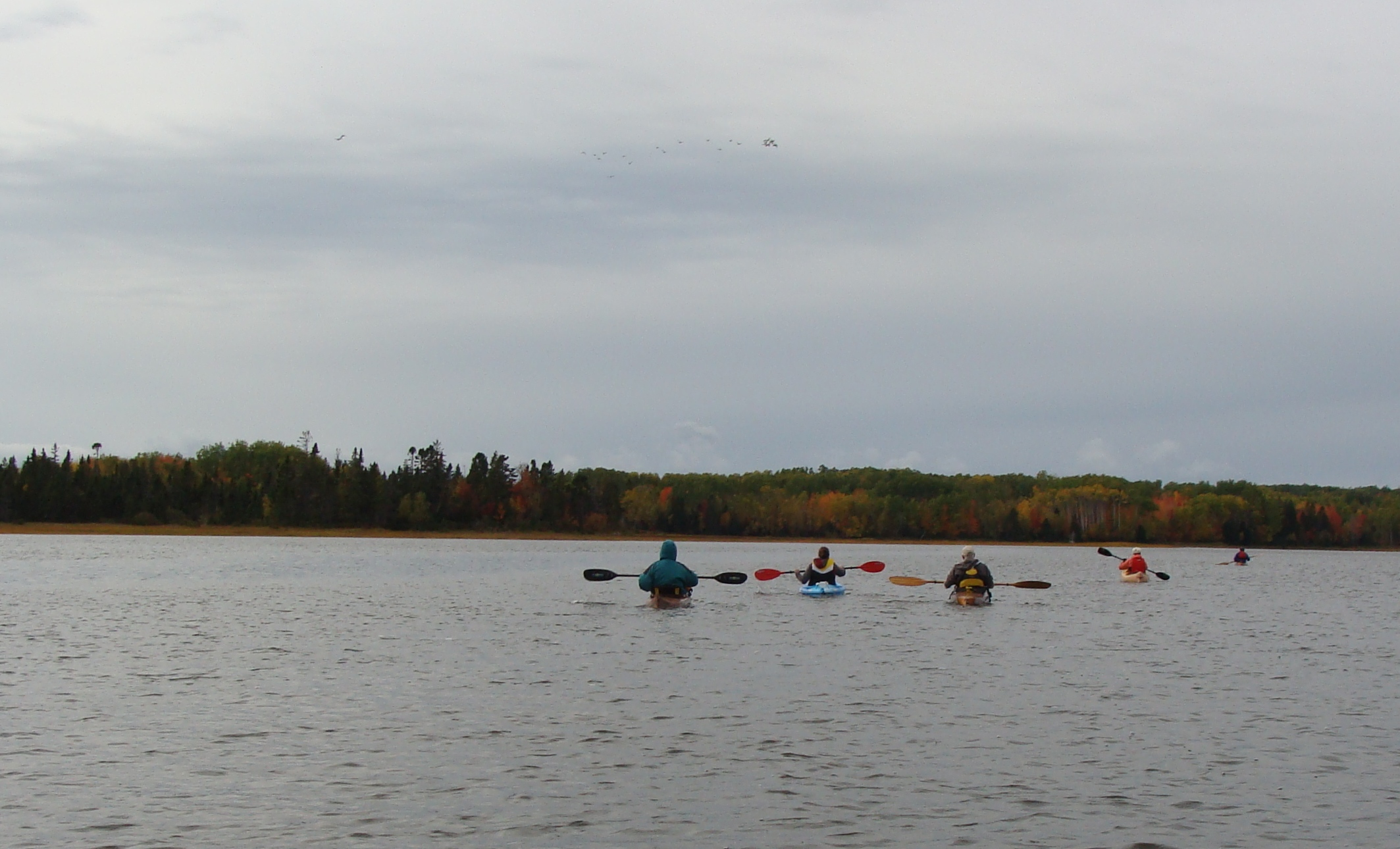 2018 10 - The kayaks head out.jpg