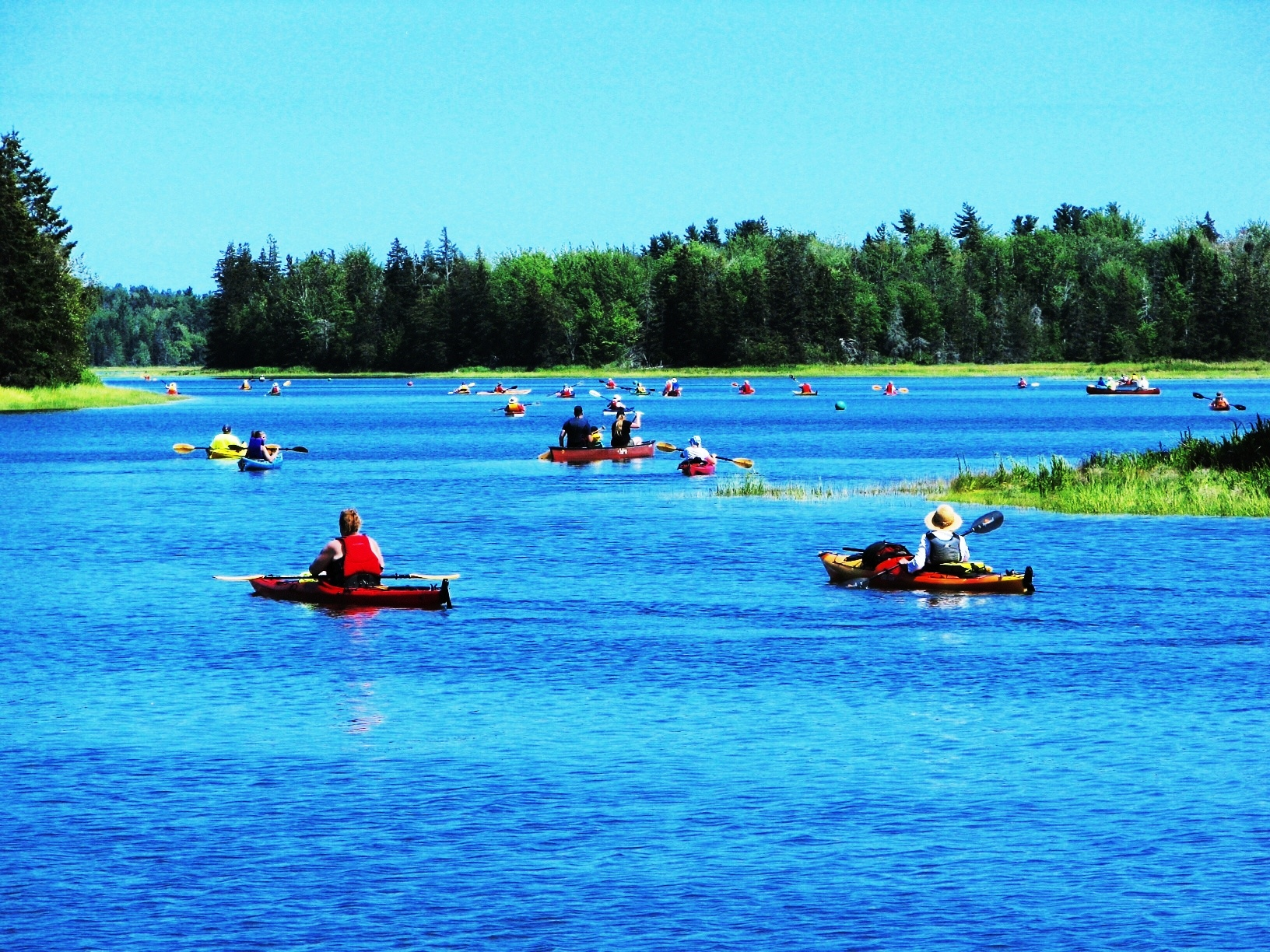 Eventually, there they all are. And a fine sight they make on our beautiful Pugwash River.