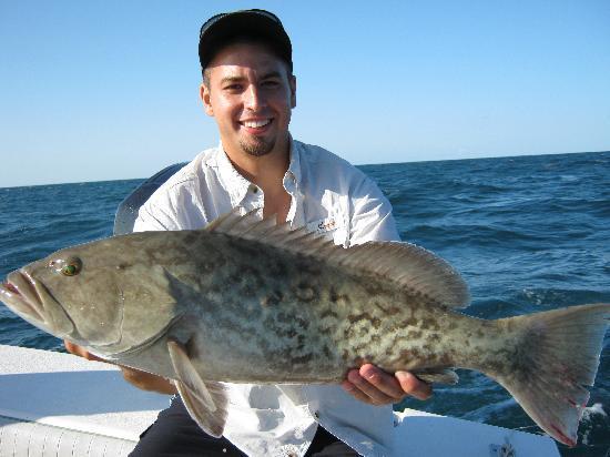 gag-grouper-good-eating.jpg