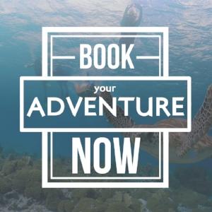 Book+Your+Adventure+Now+People.jpg