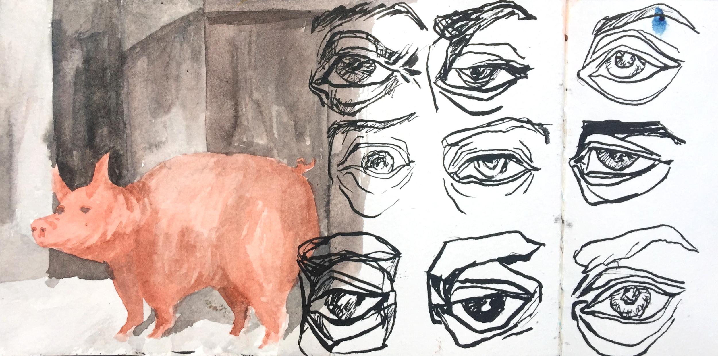 pig copy.png