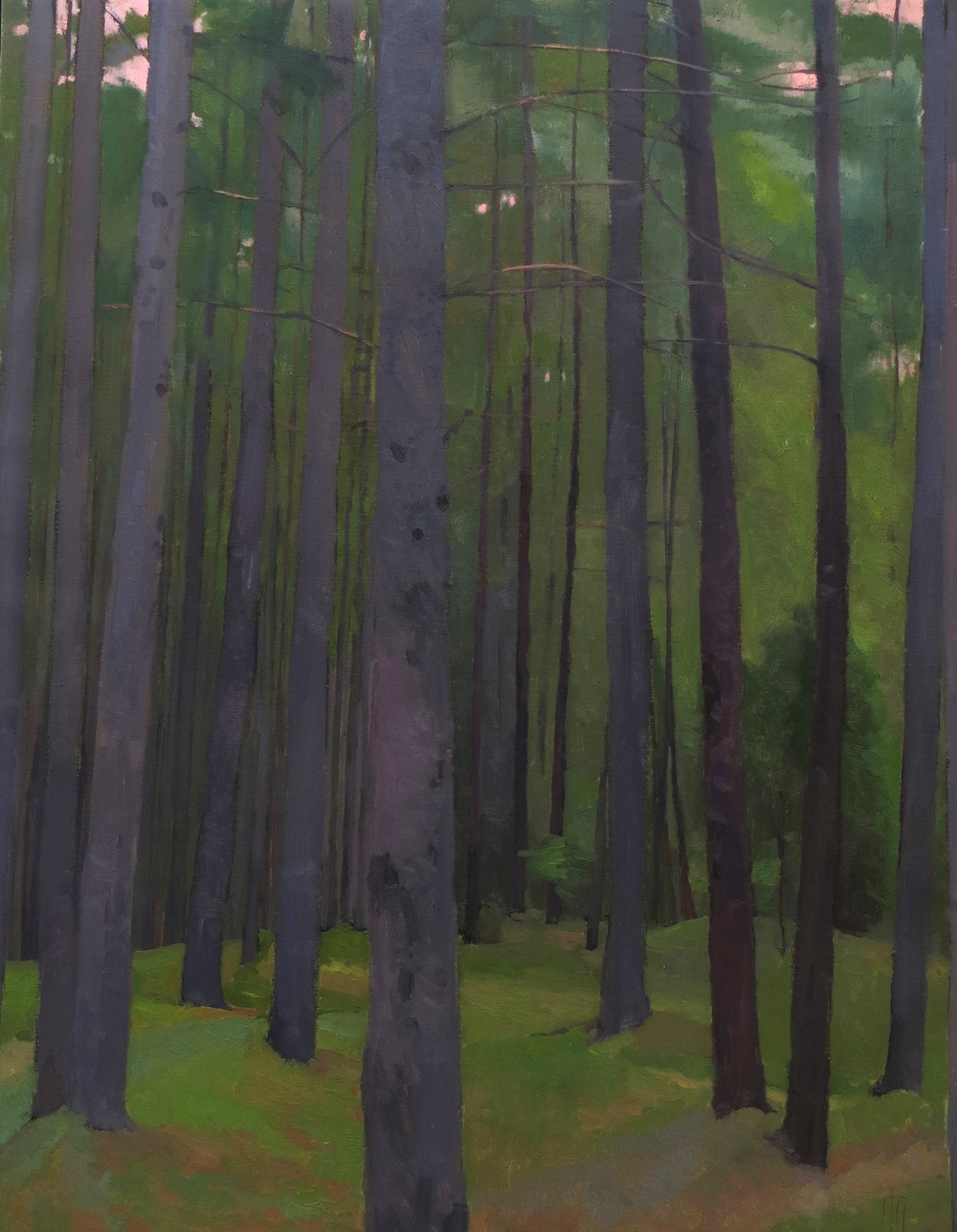 Sutton Woods  20 x 30 oil on linen  sold