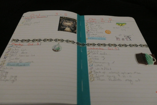 My daily journal. Note the stickers, tap and color-coded checks.
