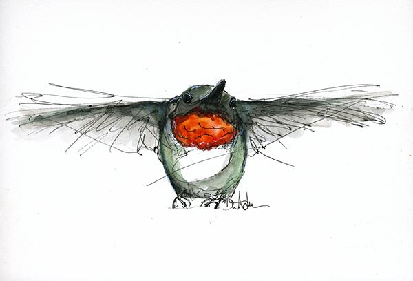 Humming bird flight dianeackers.com