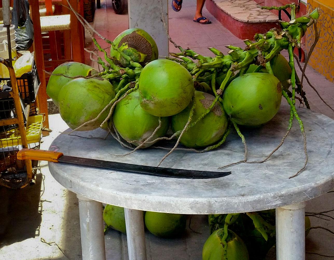 111-green-coconuts.jpg