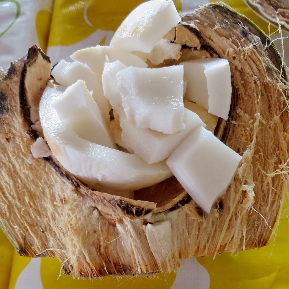 128-coconut-pieces.jpg