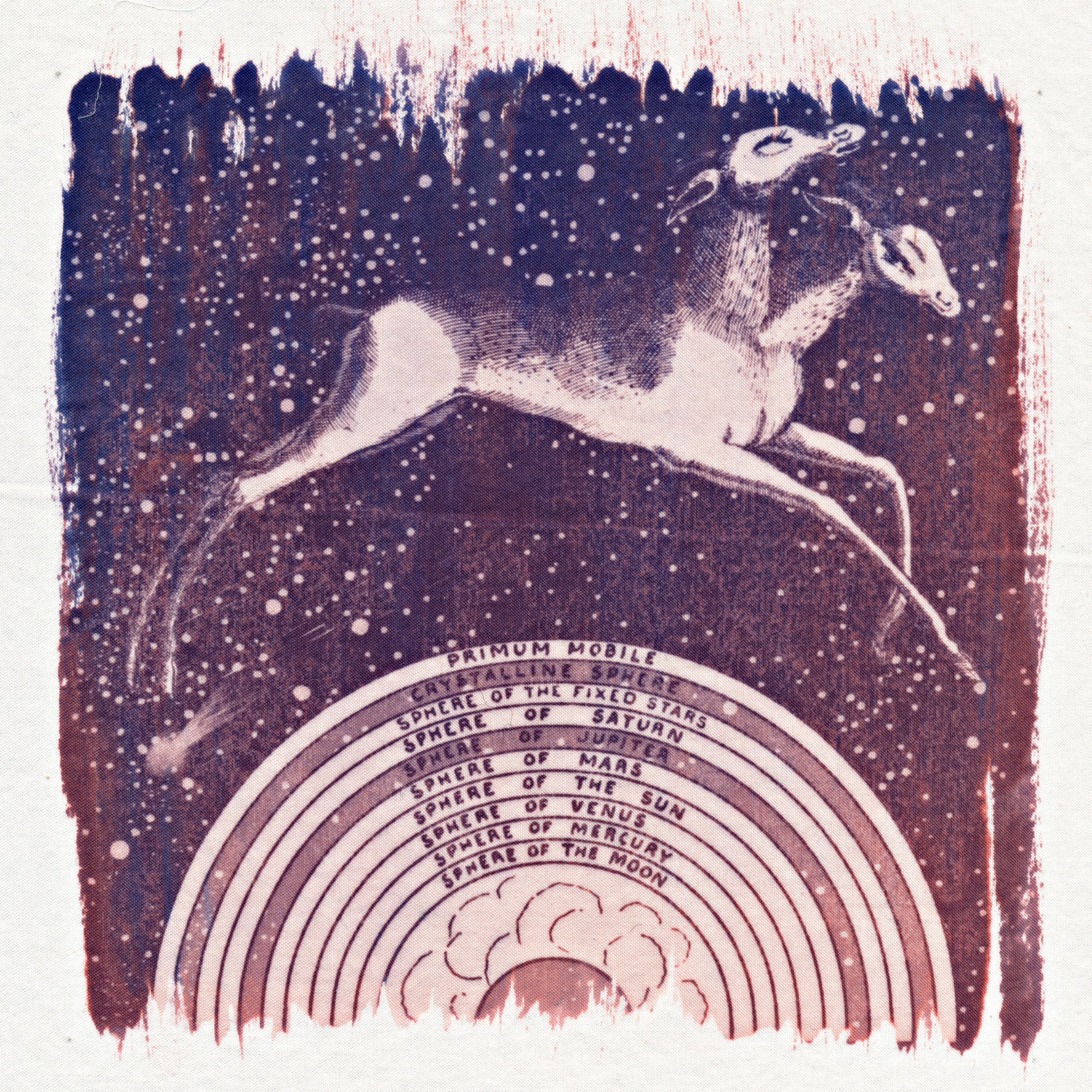 Doppeldeer: Progenitor of Asteroids, Comets and Other Celestial Flotsam