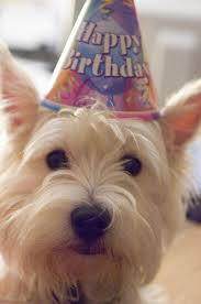 June 2, 2014 - Happy Birthday, to me! I'm three today!!