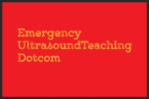 VIDEO:  High yield lecture on the basics of emergency echocardiography by Dr. Geoffrey Hayden @ emergencyultrasoundteaching.com.