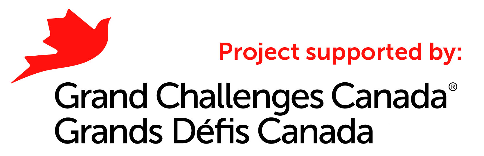 Grand Challenges Canada is funded by the Government of Canada andsupports bold ideas with big impact in global health