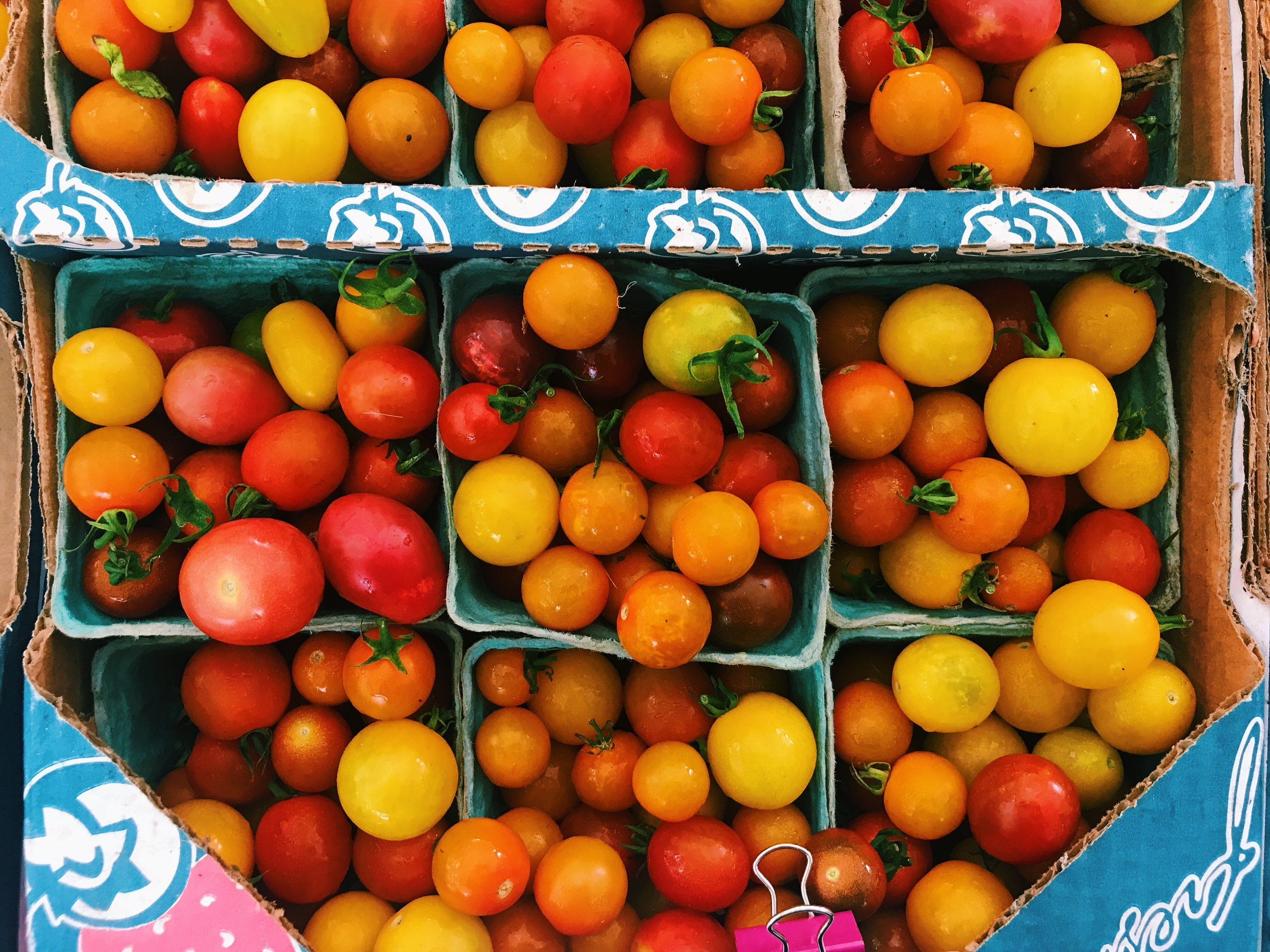 Possum Hollow Farm Tomato Season