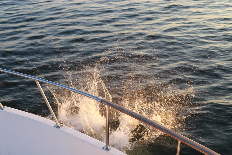 splash 1.jpg