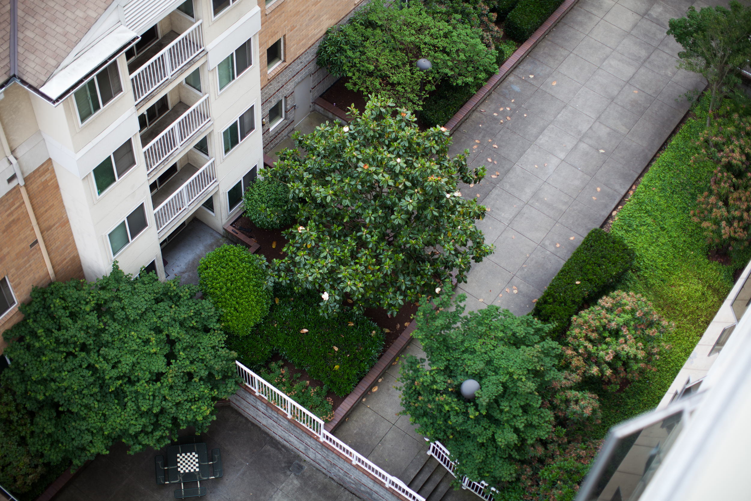 A view from the Goose Hollow Tower into the courtyard for use on their new website.