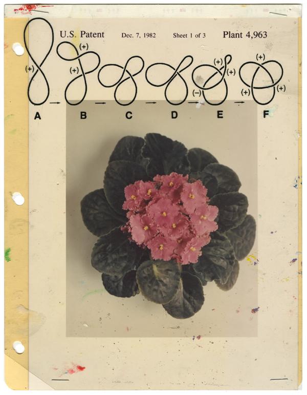 Notebook 249, 2012