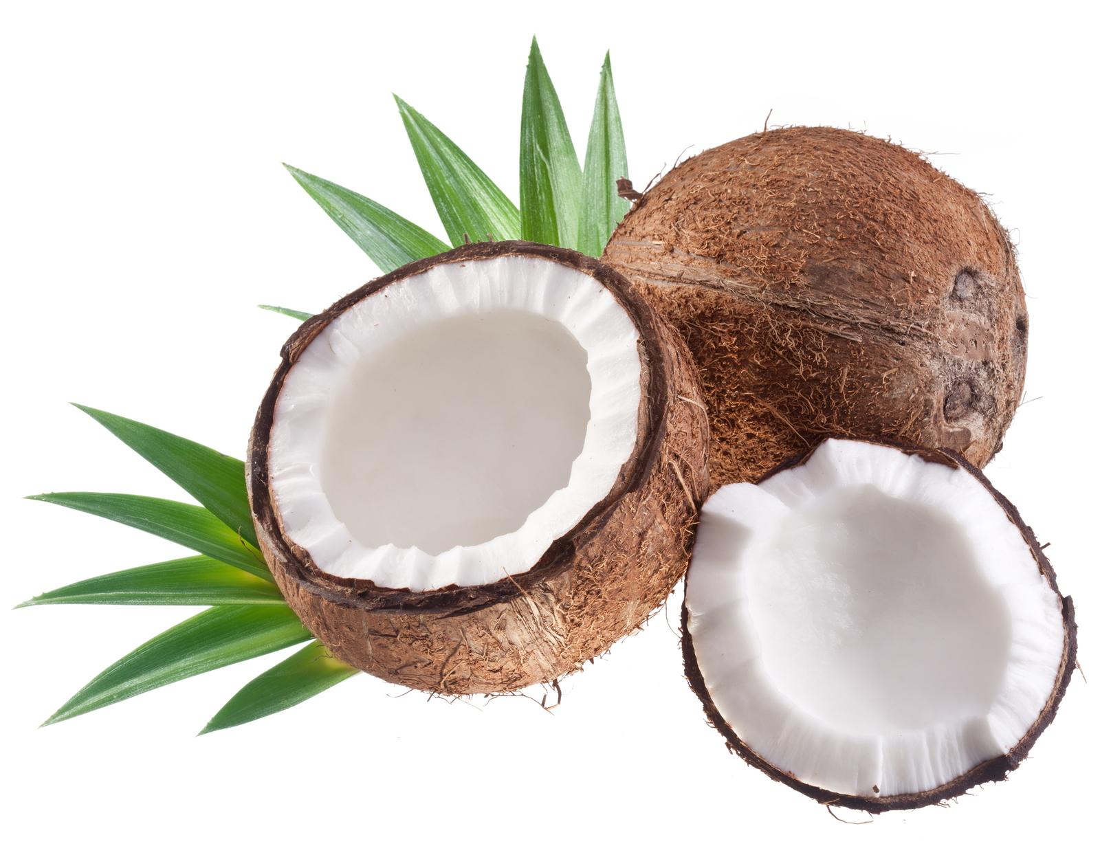 bigstock-High-quality-photos-of-coconut-12411605.jpg
