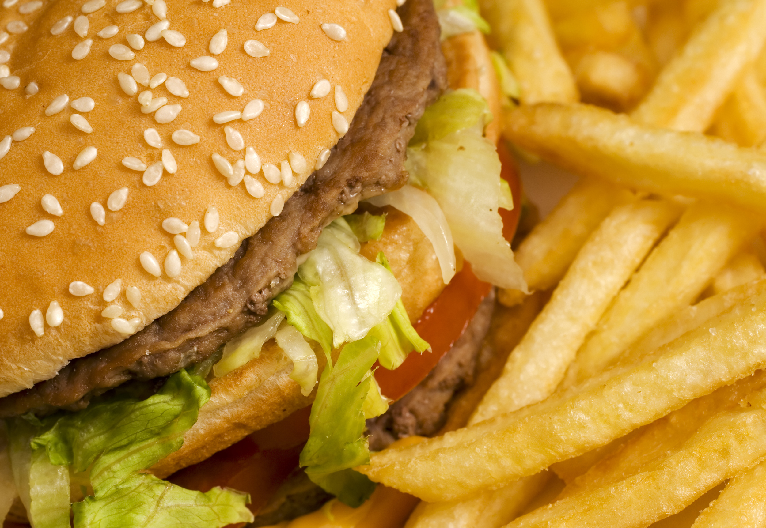 bigstock-burger-and-french-fries-close--26363396.jpg