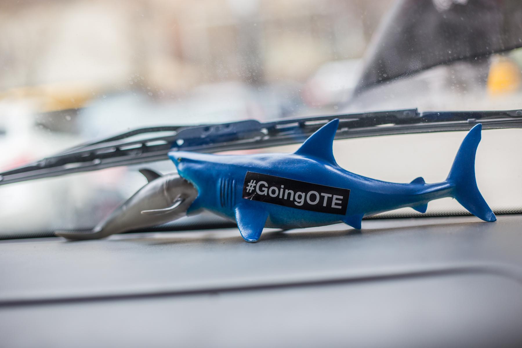 GoingOTE Shark