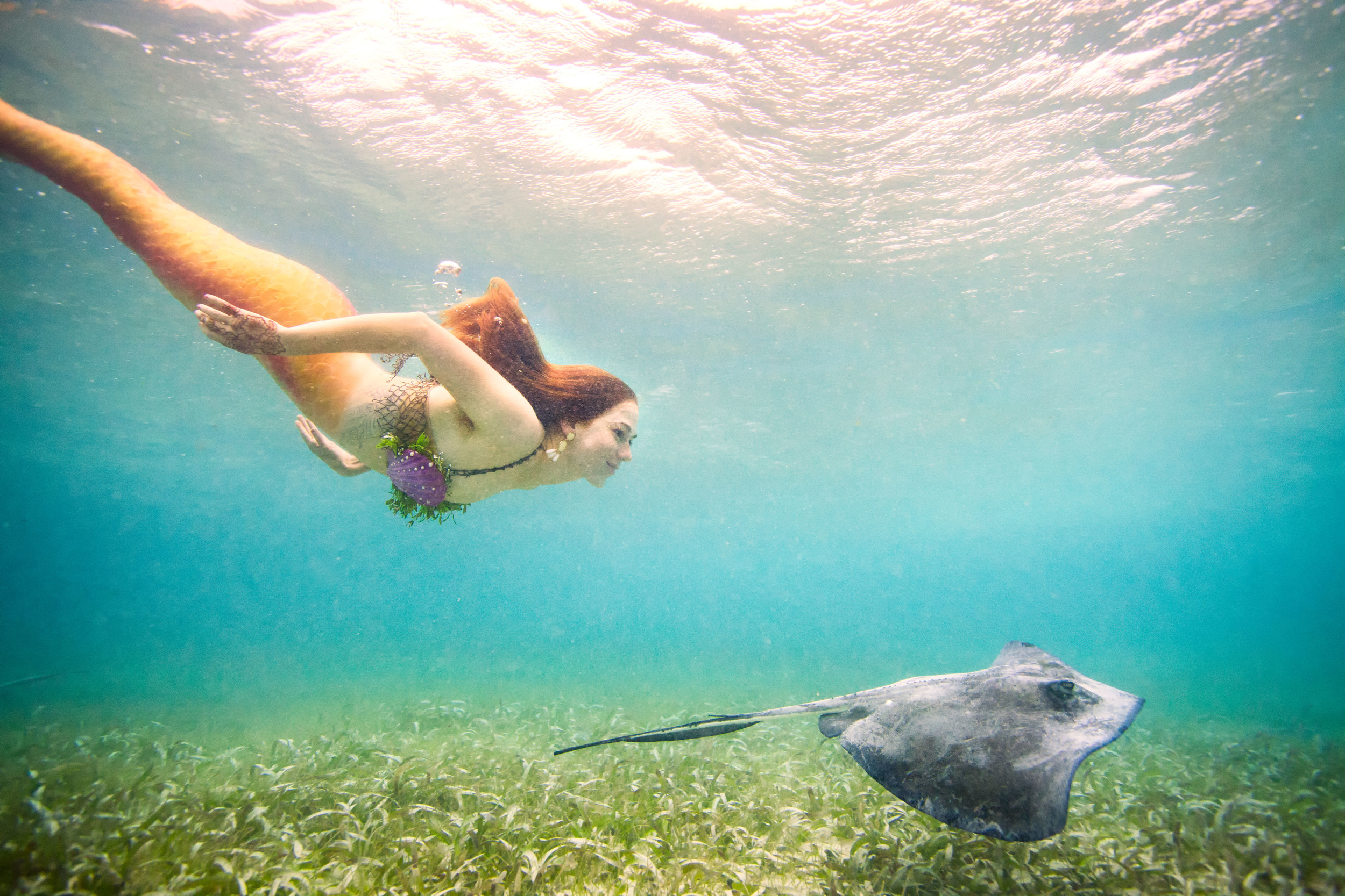 Belize Mermaid Retreat 2016-209-(ZF-10252-42383-1-060).jpg