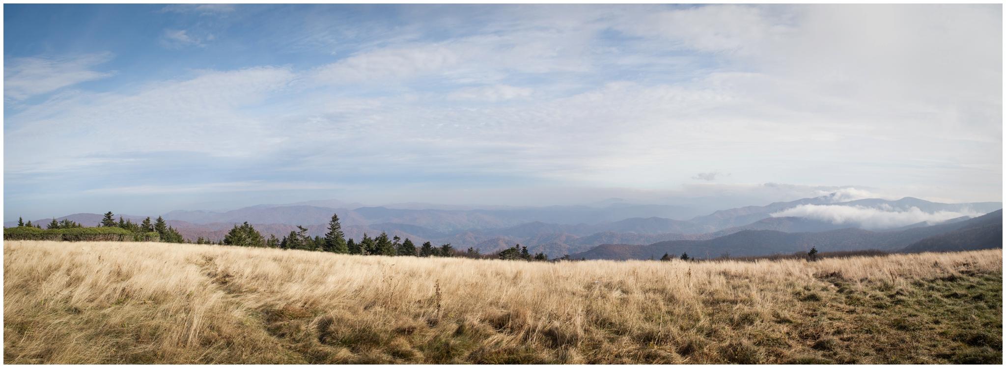 roan-mountain-carvers-gap-appalachian-trail-katy-sergent_0024.jpg