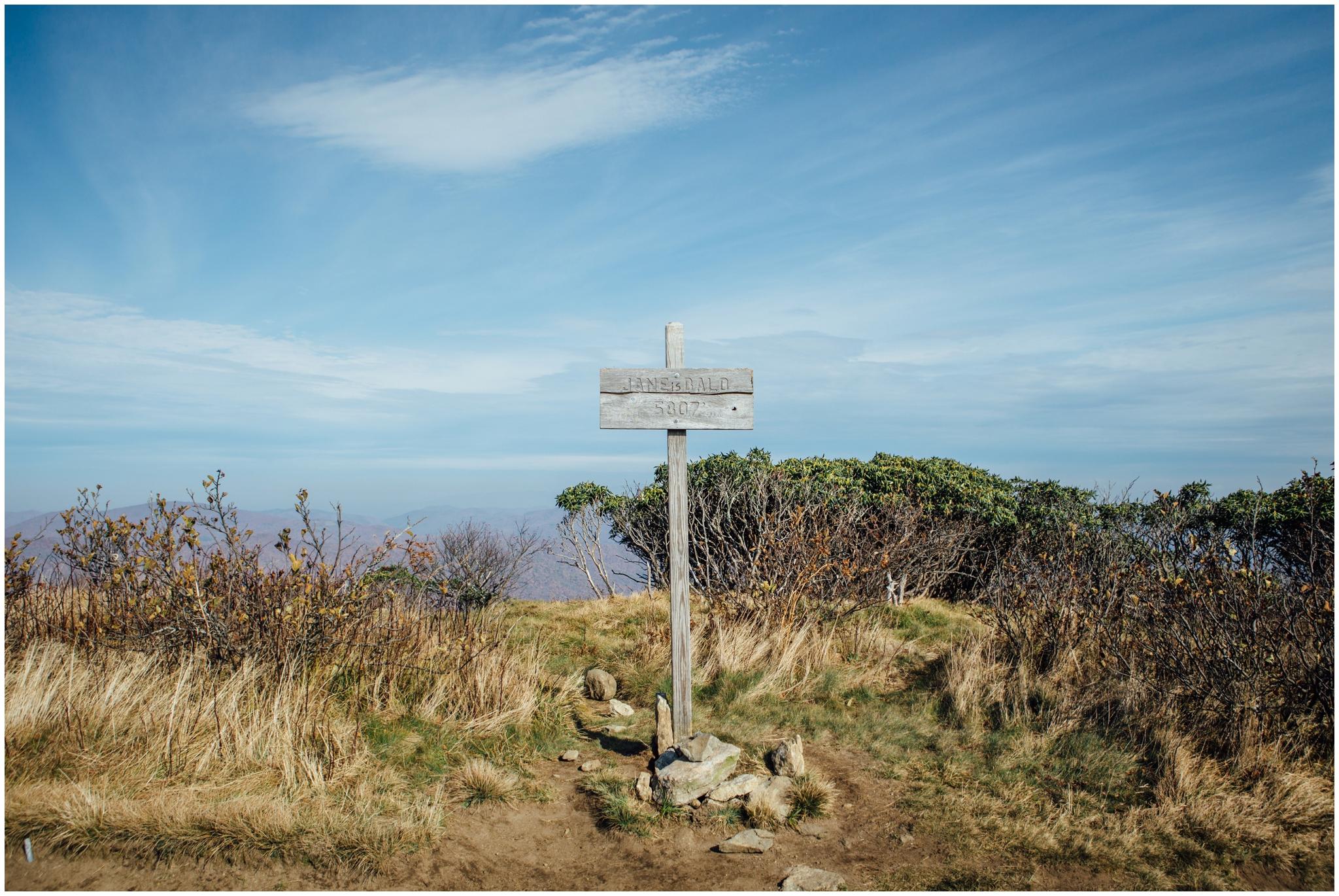 roan-mountain-carvers-gap-appalachian-trail-katy-sergent_0017.jpg